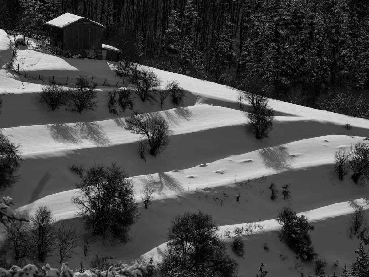 17.-Petko-Ionchev-AFIAP-Winter