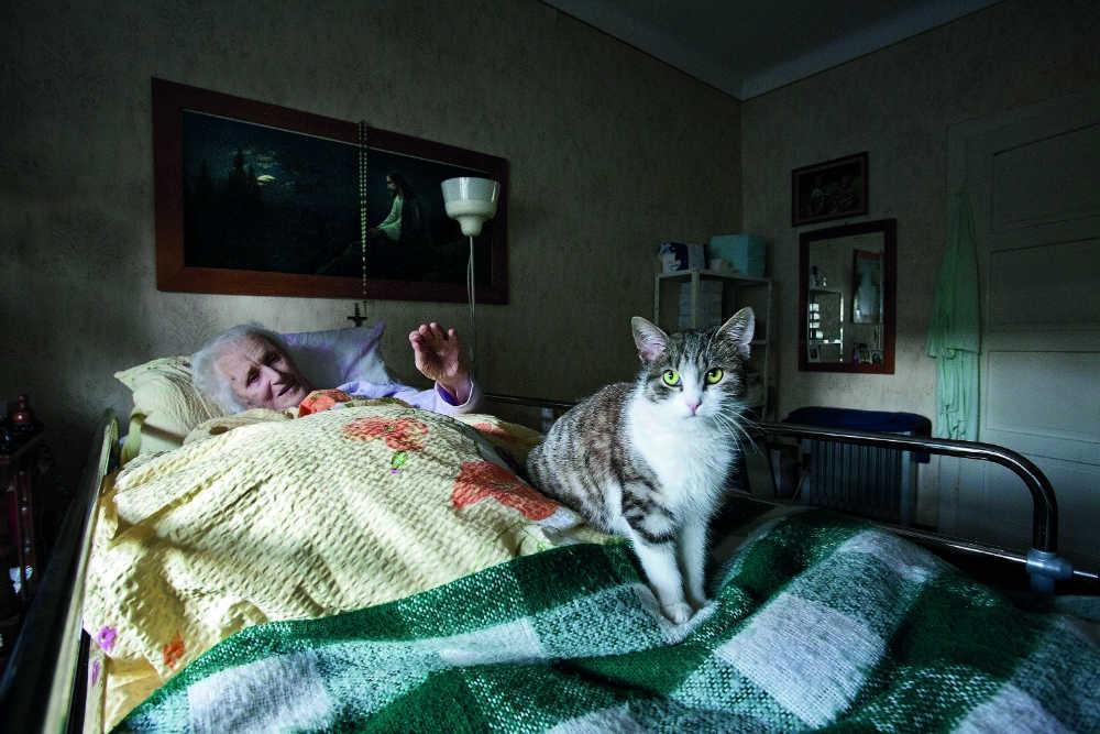3_Portfolio_2_SILVER_FIAP_Stefi Praprotnik Borko_Grandmothers_companion