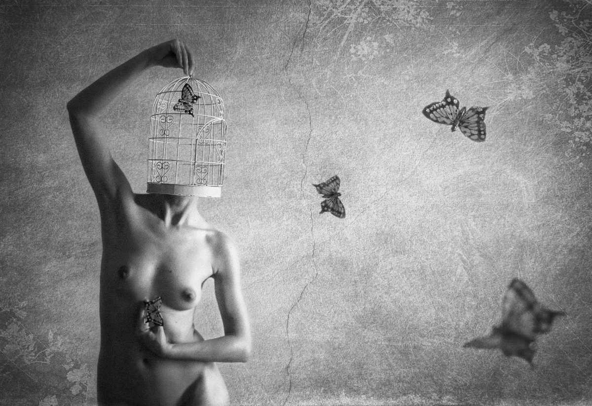 5.-Dimitrina-Andreeva-AFIAP-Butterfly-Feelings