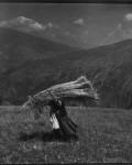12_Yordanov_Albania