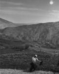 17_Yordanov_Albania